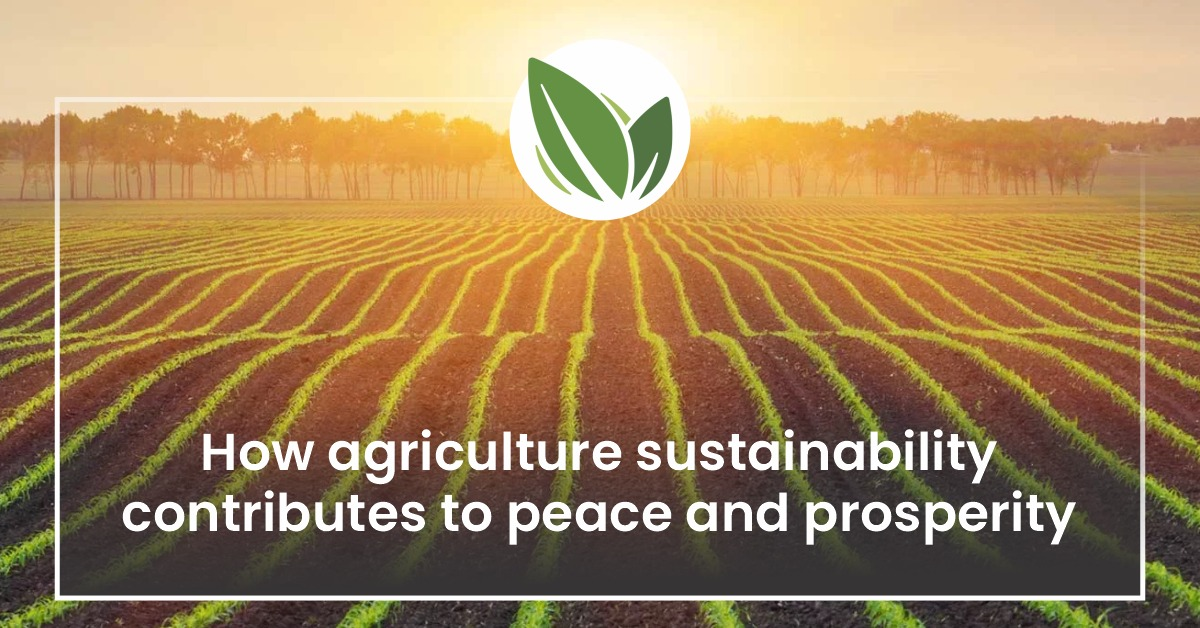 How agriculture sustainability contributes to peace and prosperity