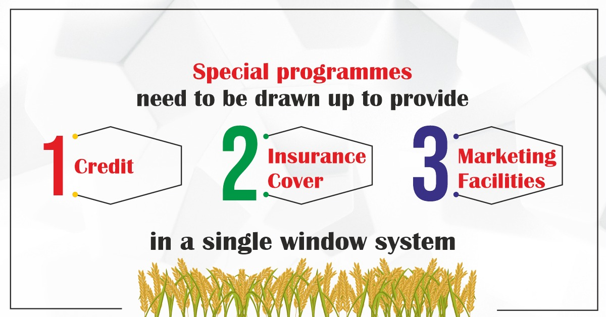 Special programmes need to be drawn up to provide credit, insurance cover and marketing facilities in a single window system