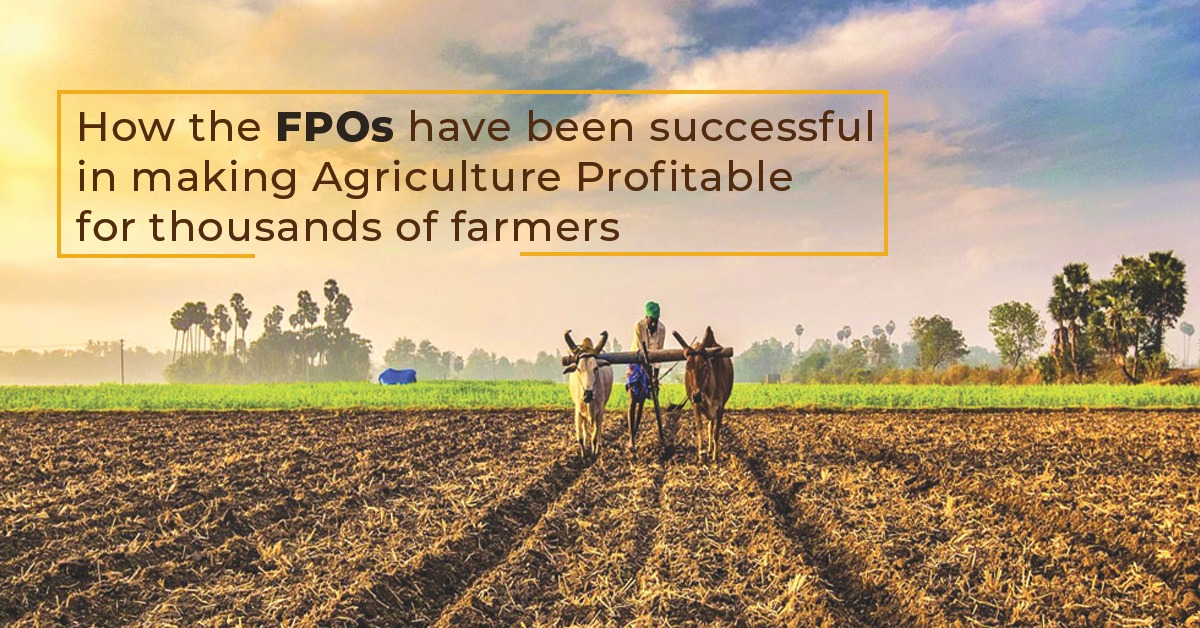 How the FPOs have been successful in making agriculture profitable for thousands of farmers