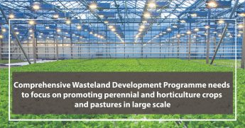 Integrated Wasteland Development Programme needs to focus on promoting perennial and horticulture crops and pastures on large scale